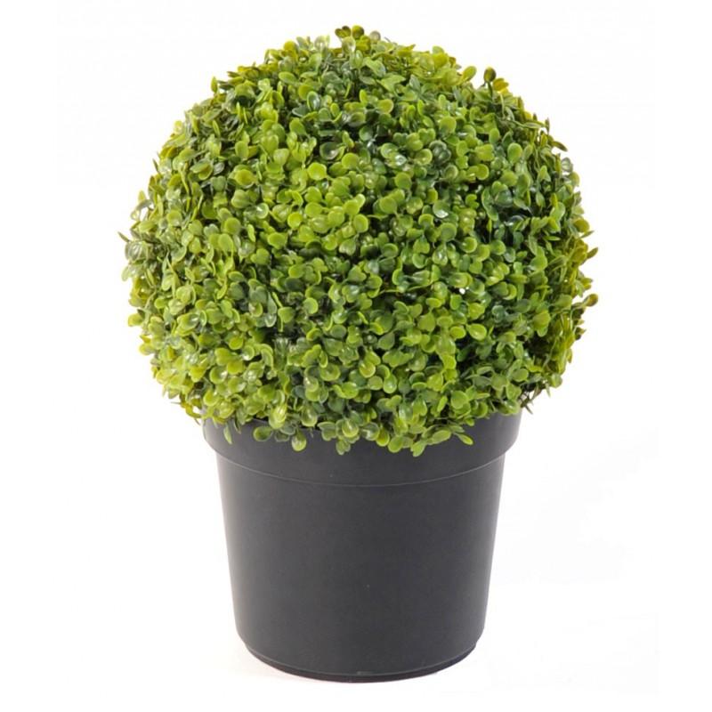 les buis sont des arbustes trs connus pour sa verdure tout au long de lanne son avantage rside dans sa manire tre incorpor partout o on dsire - Arbuste Artificiel Exterieur Pas Cher